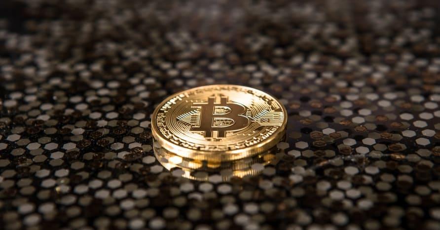 2021'de Cryptocurrency Kumarını Kucaklamak İçin Nedenler